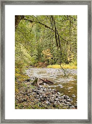 Peaceful Molalla River Framed Print