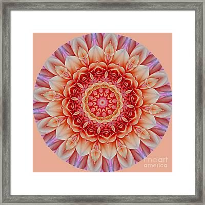 Peach Floral Mandala Framed Print