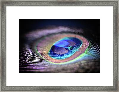 Framed Print featuring the photograph Peacocked by Michelle Wermuth