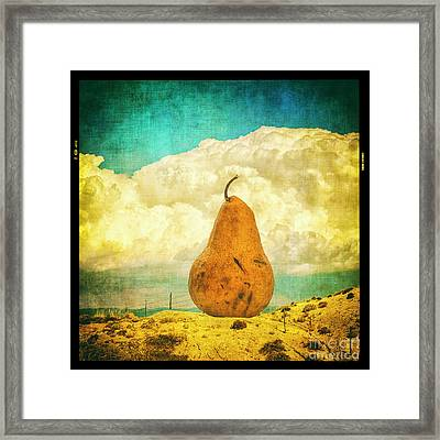 Framed Print featuring the photograph Pear In The Landscape by Terry Rowe
