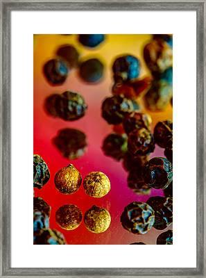 Peppercorns Framed Print