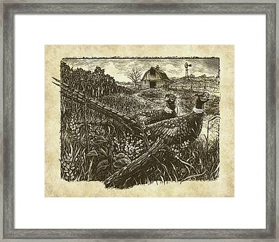 Pheasants Framed Print