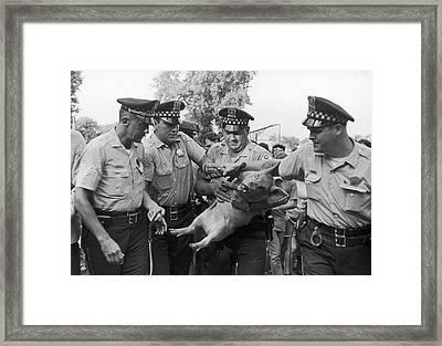 Pigasus Arrested Framed Print by Fred W. McDarrah