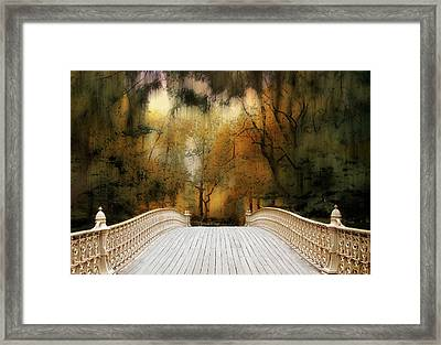 Pine Bank Arch In Autumn Framed Print
