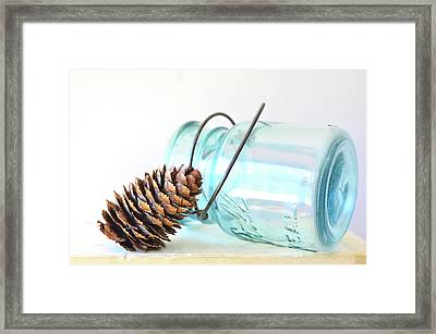 Framed Print featuring the photograph Pine Cone And A Jar by Michelle Wermuth
