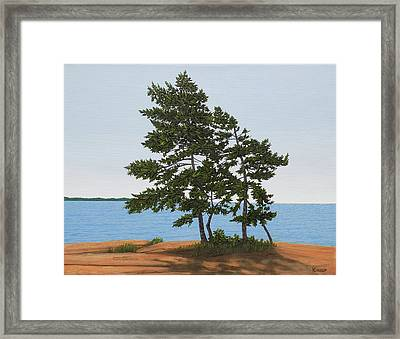 Pine On The Point Framed Print