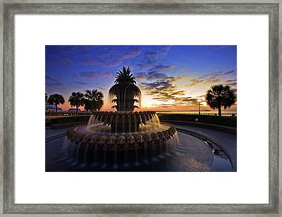 Pineapple Fountain In Charleston Framed Print
