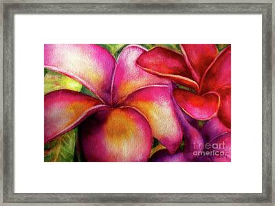Pink And Red Plumerias Framed Print