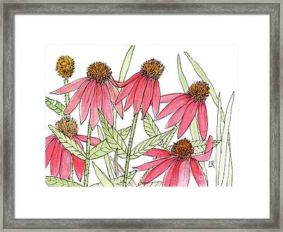 Pink Coneflowers Gather Watercolor Framed Print