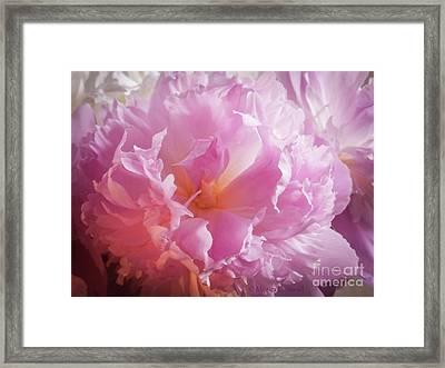 Pink Flowers No. 77 Framed Print