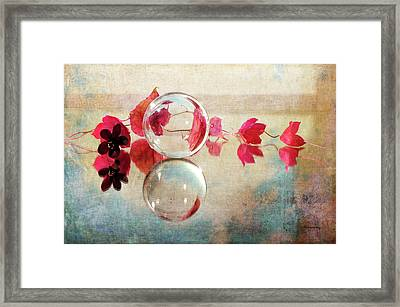 Framed Print featuring the photograph Pink Line by Randi Grace Nilsberg