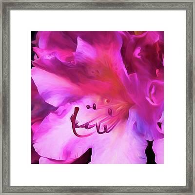 Pink O'keefe Framed Print