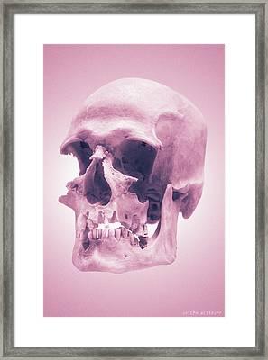 Pink Textures Framed Print