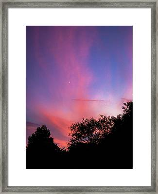 Pink Whisps Framed Print