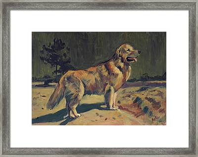 Pixel In The Dunes Of Loon Op Zand Framed Print