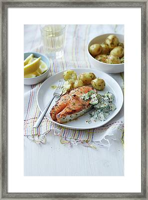 Plate Of Salmon, Potatoes And Salad Framed Print by Cultura Rm Exclusive/brett Stevens