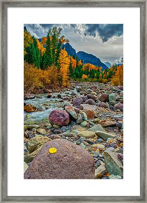 Point Of Color Framed Print