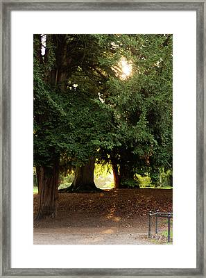 Framed Print featuring the photograph Portal To Another World by Scott Lyons