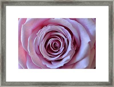 Framed Print featuring the photograph Powerful by Michelle Wermuth