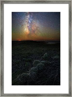 Framed Print featuring the photograph Pricked  by Aaron J Groen