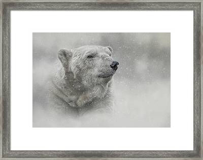 Prince Of The North Pole Framed Print