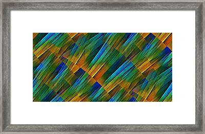 Propagation Framed Print