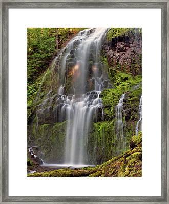 Proxy Falls In Warm Light Framed Print by Leland D Howard