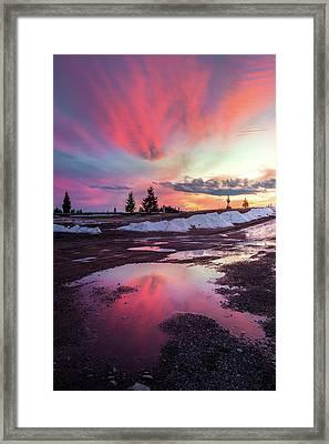 Puddle Reflection / Columbia Falls, Montana  Framed Print