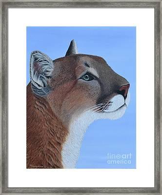 Puma Framed Print