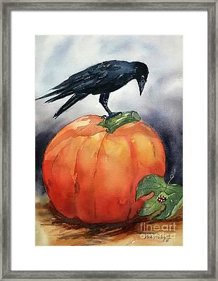 Pumpkin And Crow Framed Print