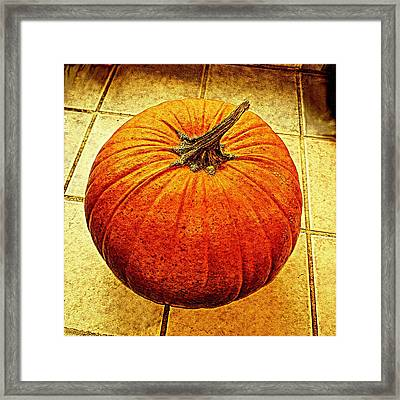 Pumpkin On Tile Framed Print by Keith Cassatt