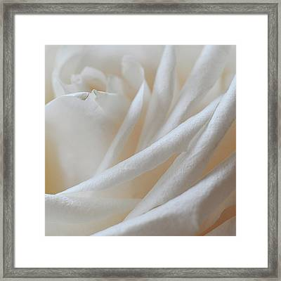 Framed Print featuring the photograph Purity by Michelle Wermuth