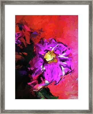 Purple And Yellow Flower And The Red Wall Framed Print