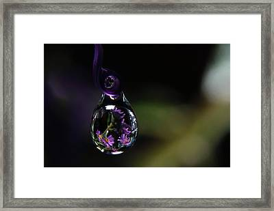 Framed Print featuring the photograph Purple Dreams by Michelle Wermuth