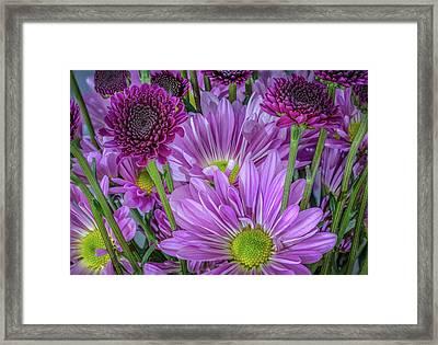 Purple Power Framed Print