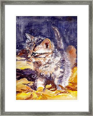 Pussy On A Yellow Blanket Framed Print
