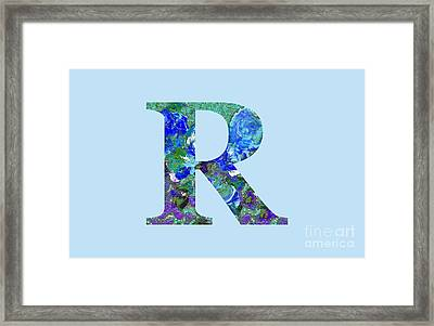 R 2019 Collection Framed Print