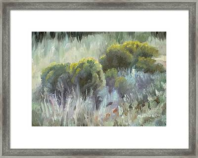 Framed Print featuring the painting Rabbit Brush Study by Peter Mathios