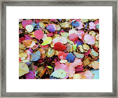 Framed Print featuring the photograph Rainbow Autumn Leaves Painterly by Andee Design