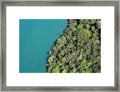Rainforest Meeting Water Framed Print by Fuse