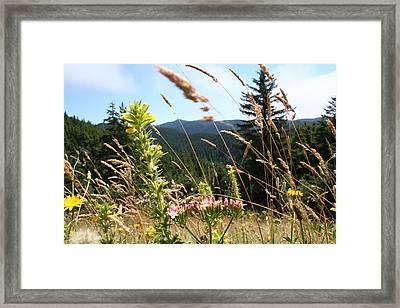 Range Obscured Framed Print