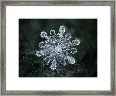 Framed Print featuring the photograph Real Snowflake - 04-feb-2018 - 1 by Alexey Kljatov