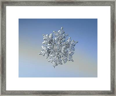 Framed Print featuring the photograph Real Snowflake - 05-feb-2018 - 17 by Alexey Kljatov