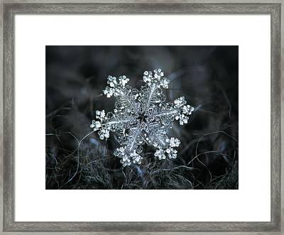 Framed Print featuring the photograph Real Snowflake - 26-dec-2018 - 1 by Alexey Kljatov