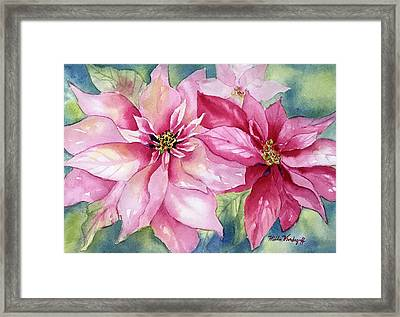 Red And Pink Poinsettias Framed Print