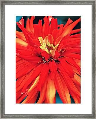 Red Bliss Framed Print