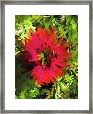 Red Flower Flames Framed Print