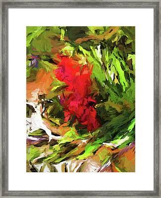 Red Flower On The Branch Framed Print
