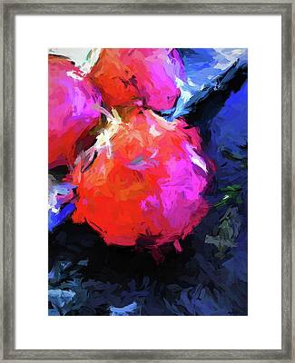 Red Pomegranate In The Blue Light Framed Print