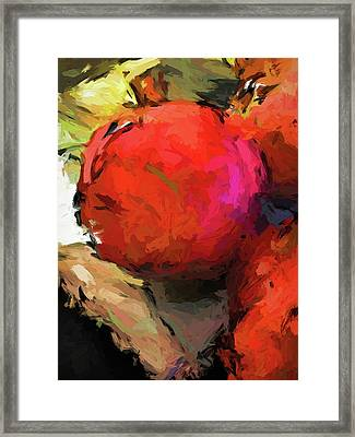 Red Pomegranate In The Yellow Light Framed Print